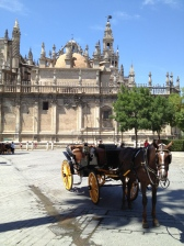 The Cathedral in Seville, which dates back to the late 1400s, is said to be the largest Gothic building in the world and the third largest church in Europe.