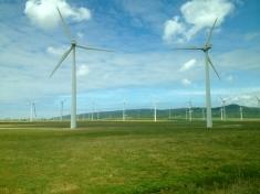 Windfarm, near Tarifa
