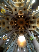 The ceilings are breathtaking at the Basilica of the Sagrada Familia.