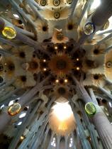 The ceilings are breathtaking at the Basilica of the Sagrada Familia.