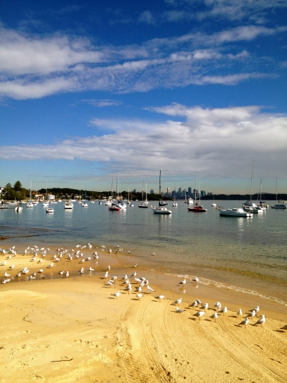 No photographic skill required. It's all there in Watsons Bay - just point and click.