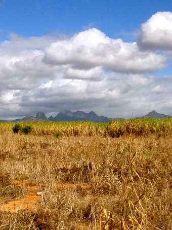 Views over the mountains beyond the cane fields
