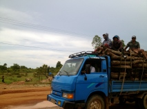 This is not an unusual scene on the open roads of Cambodia.