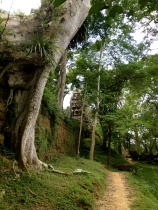 The Angkor Thom complex is famous for its carved stone faces.