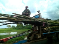 This iron cow is fully loaded with bamboo and people.