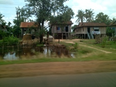 A row of typical rural houses along the roadside.