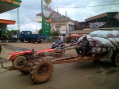 These rural vehicles, used for carting bulk supplies and produce, are known locally as 'iron cows.'