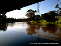 A morning rower on the Yarra River, Melbourne.
