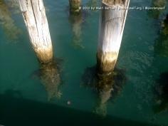 Princes Pier, Port Melbourne.
