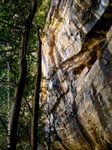 This tiger-striped rock overhangs one of the walking trails at Wentworth Falls.