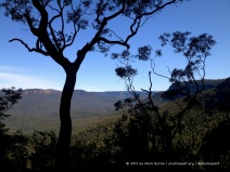 A view across the valley from the walking trail beneath Wentworth Falls.