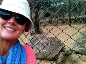 I couldn't blog about 'selfies' without including an example, so here's one from my trip to Mauritius in August. Selfies have a lot of potential for humour and the joke here is that the tortoise and I are doing a selfie together. This is one that I did share with my friends on Facebook, with the following caption: M: this is a good spot for a selfie...just need to frame the shot...get it in focus...smile... Tortoise: just take the photo lady, I can't hold this pose forever! :)