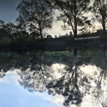 Reflections on the Yarra River on a misty morning, image inverted