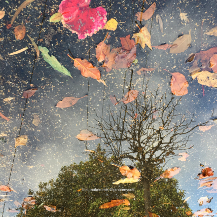 Autumn reflections, inverted image